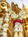 buddha garland
